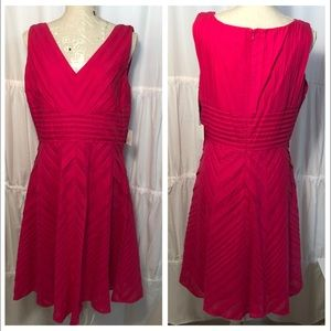 Calvin Klein Sleeveless Fit and Flare Pink Dress